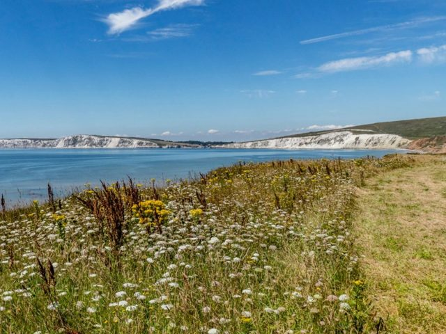 Compton Bay and Downs – National Trust